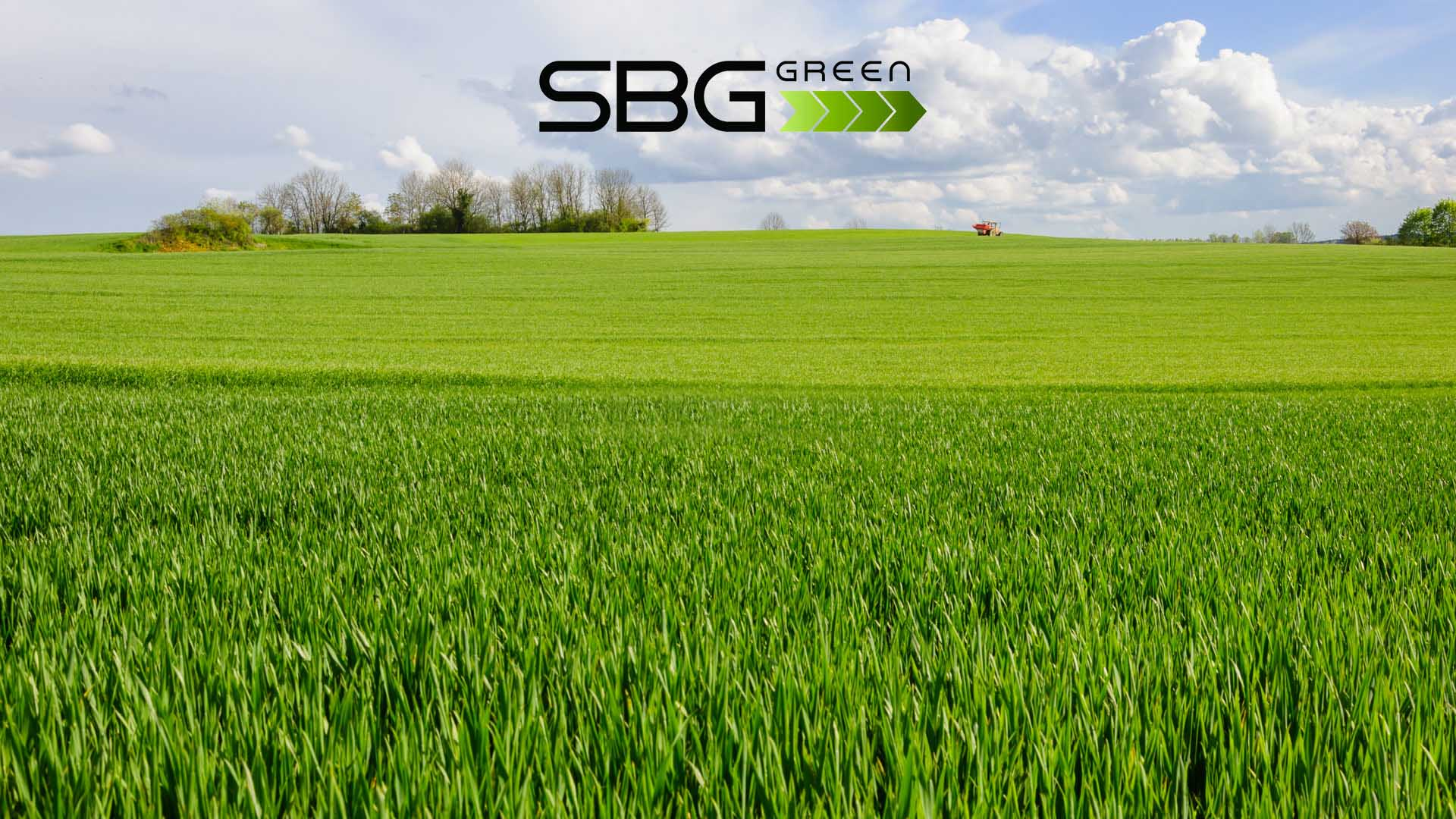 sbg green def copia - Green